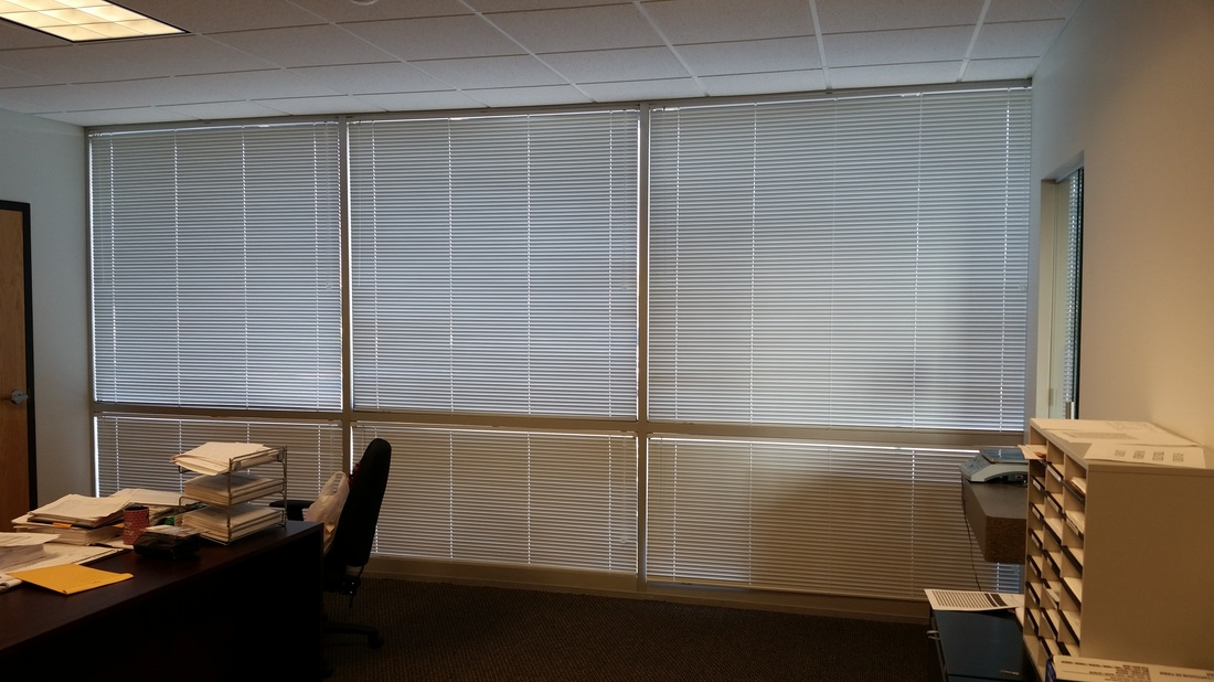 Commercial Blinds in an Office